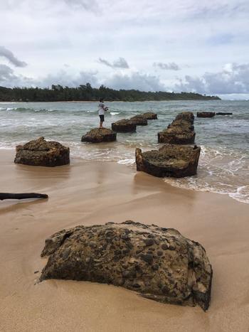 hawaii_190129_2.jpg