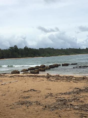 hawaii_190129_3.jpg