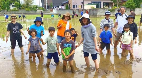 6_riceplanting2018.jpg