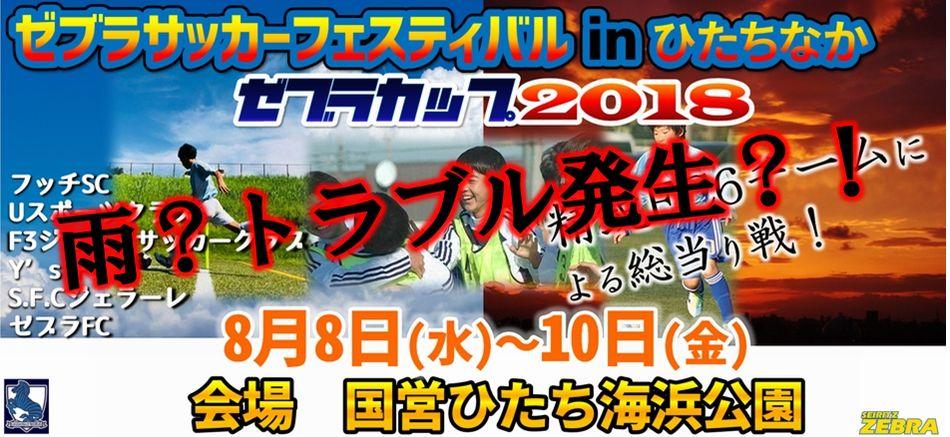 第2回 ゼブラサッカーフェスティバル2018 in ひたちなか 2日目